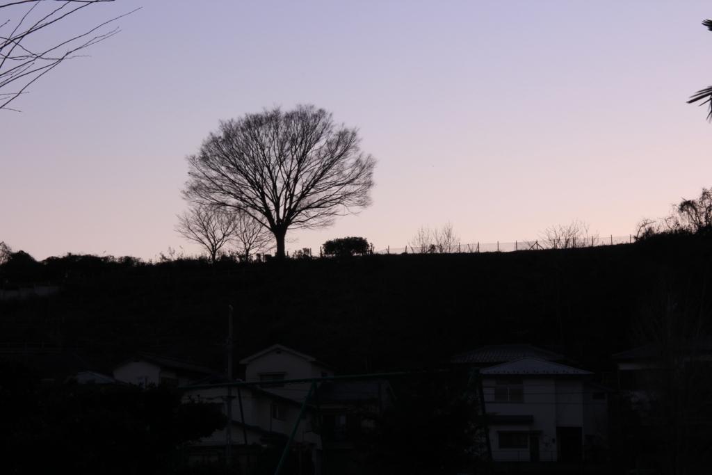f:id:tokotoko_yuuki:20180114144216j:plain