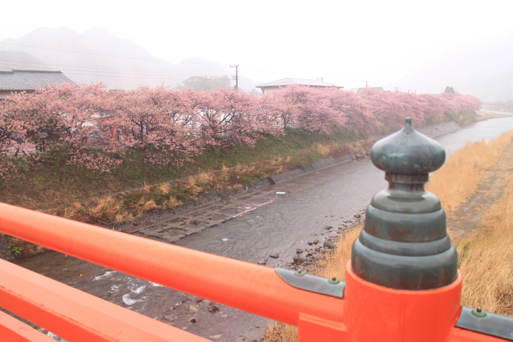 f:id:tokotoko_yuuki:20180308012113j:plain