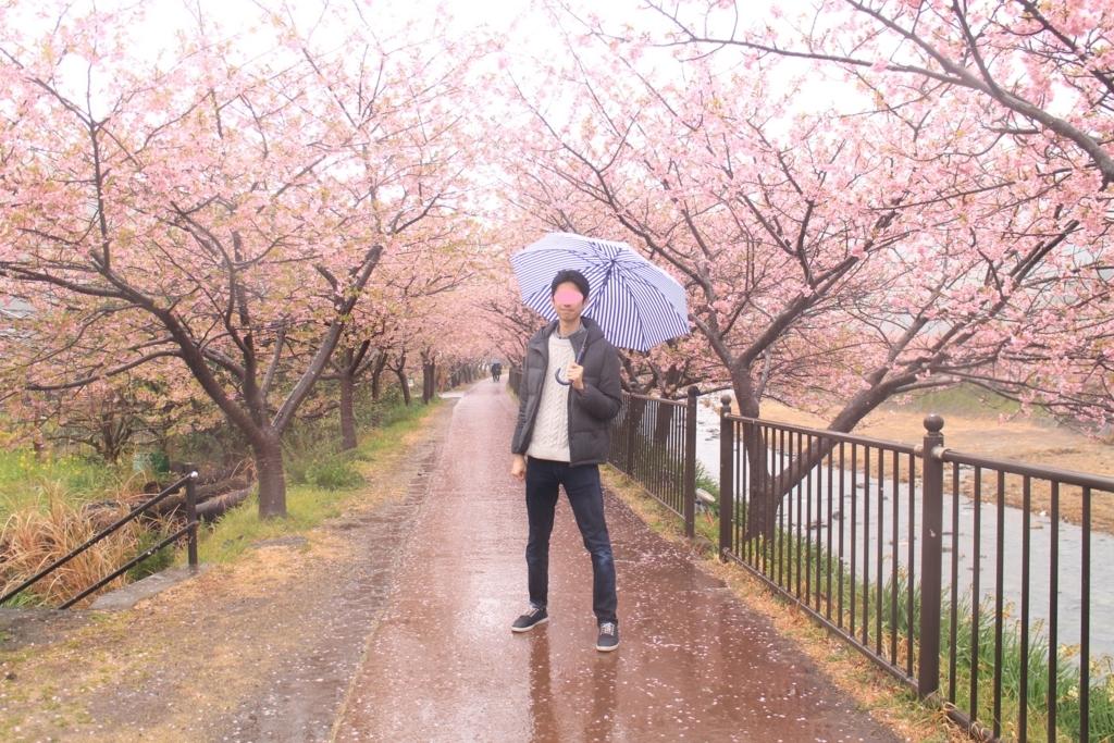 f:id:tokotoko_yuuki:20180322105115j:plain