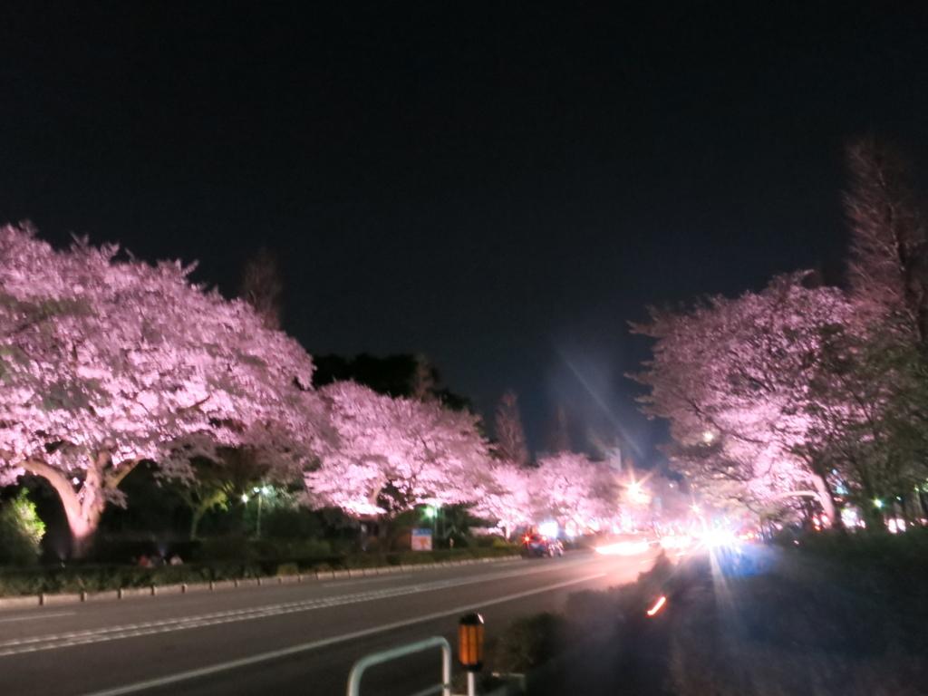 f:id:tokotoko_yuuki:20180401124934j:plain