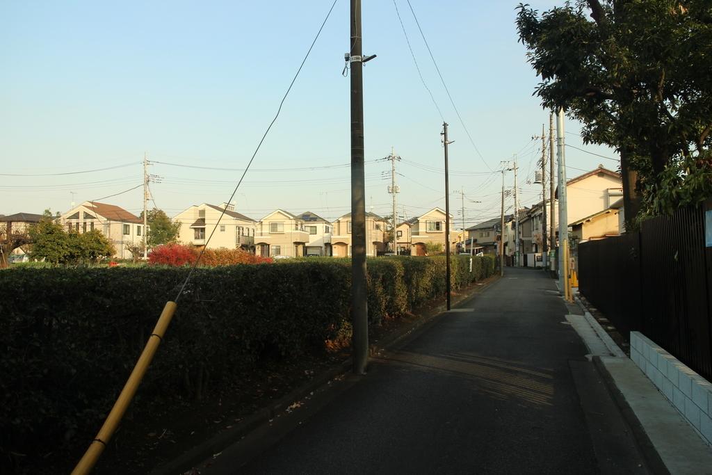 f:id:tokotoko_yuuki:20181207190059j:plain