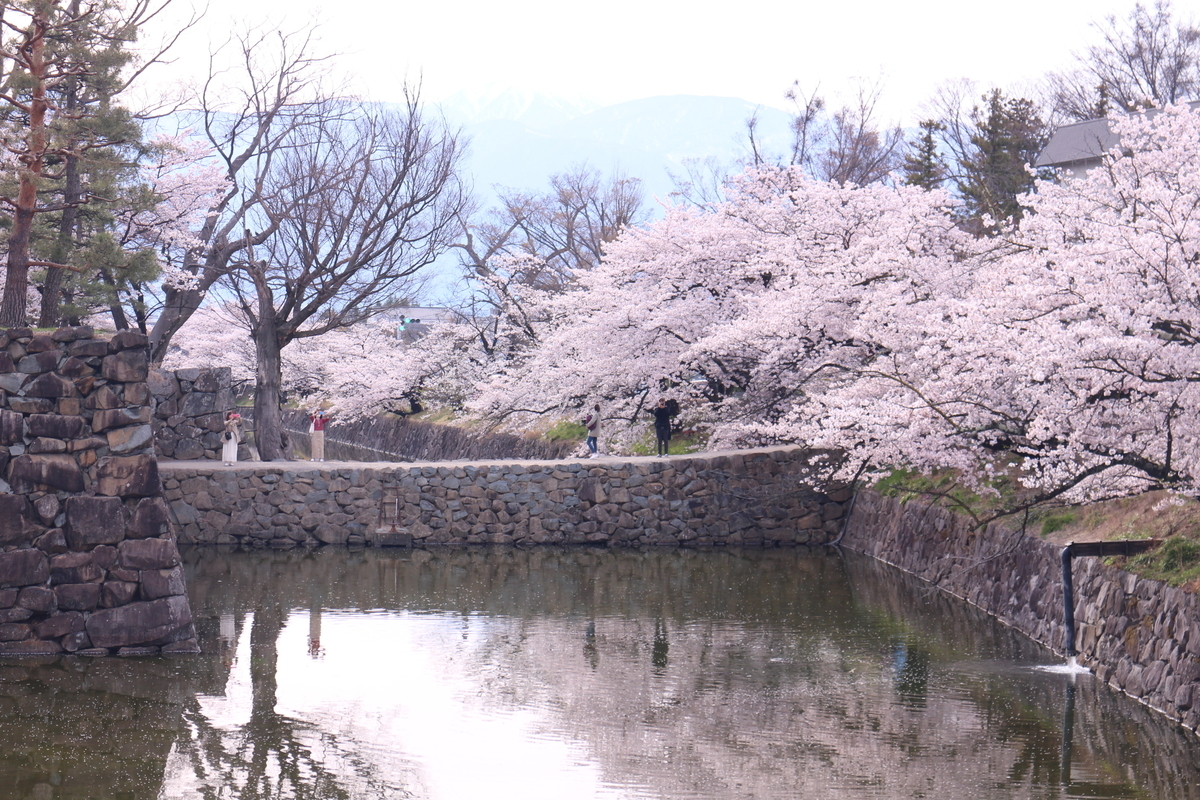 f:id:tokotoko_yuuki:20190419212324j:plain