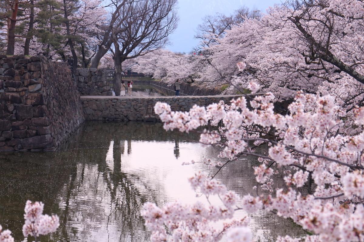 f:id:tokotoko_yuuki:20190419212331j:plain