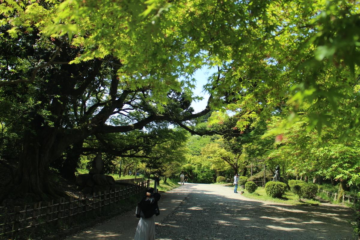 f:id:tokotoko_yuuki:20190608223603j:plain