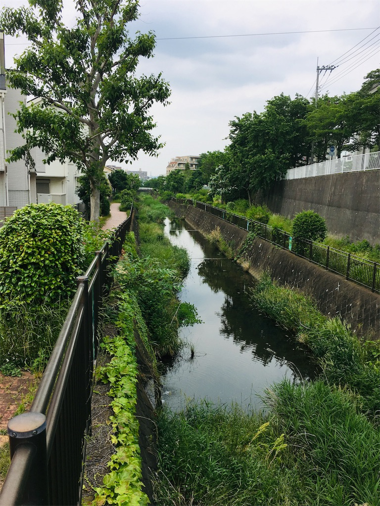 f:id:tokotoko_yuuki:20190622222805j:plain