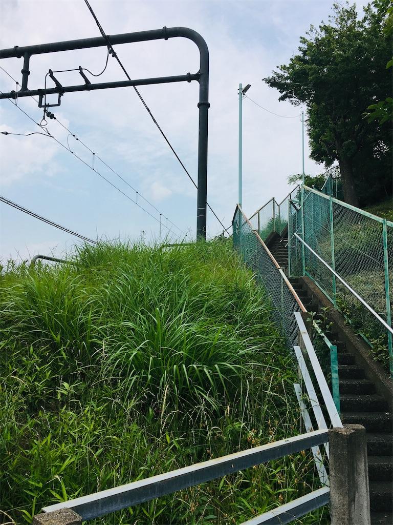f:id:tokotoko_yuuki:20190622222815j:plain
