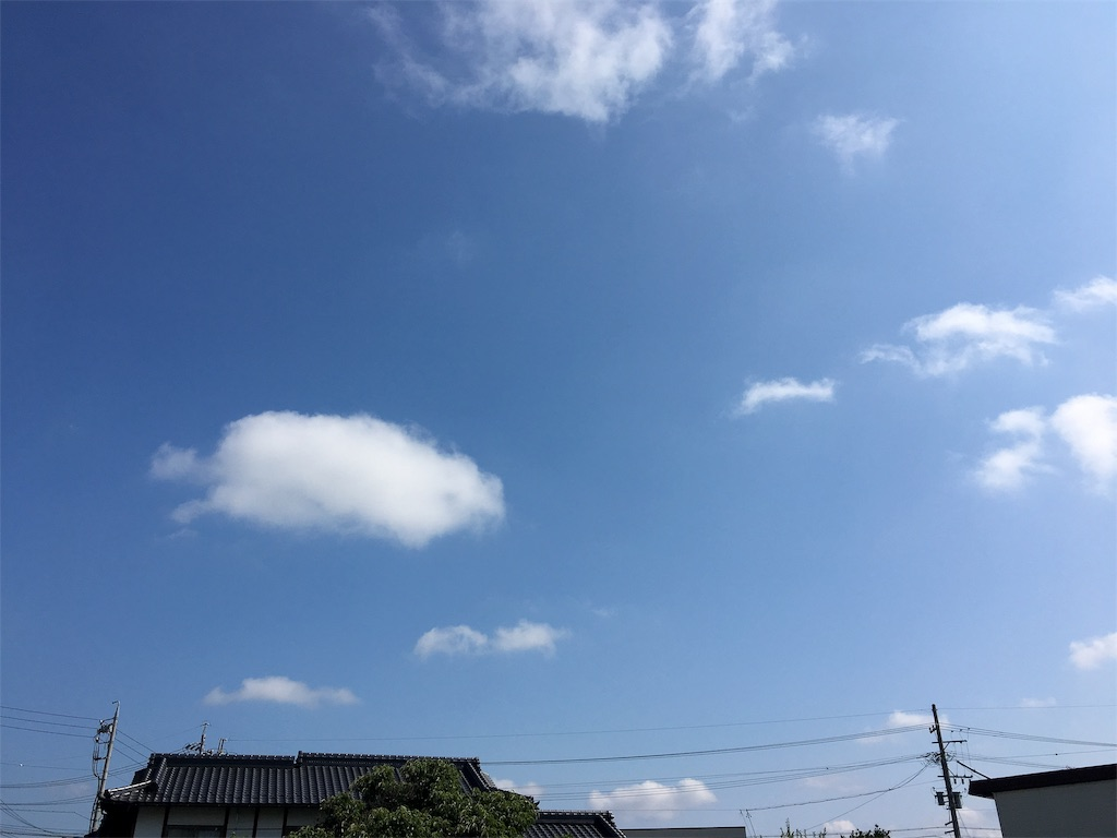 f:id:tokotoko_yuuki:20190720195557j:plain