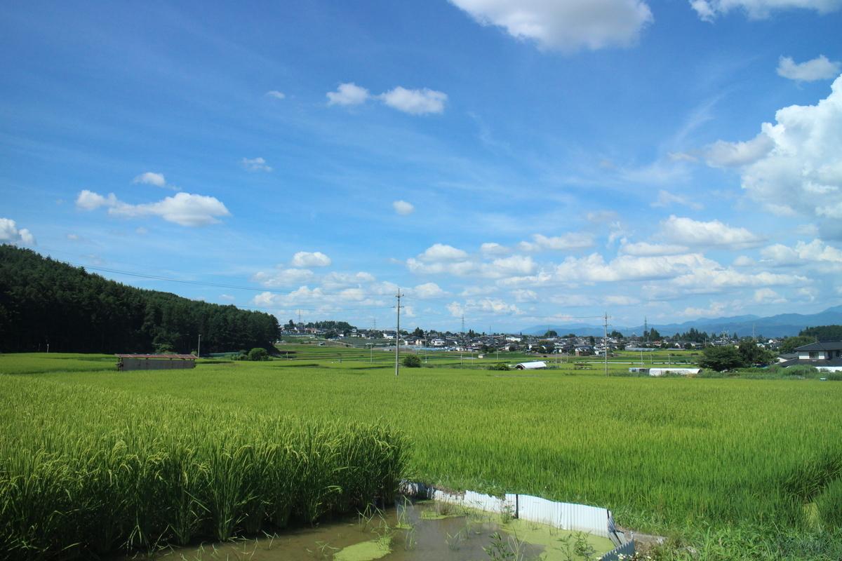 f:id:tokotoko_yuuki:20190913205435j:plain