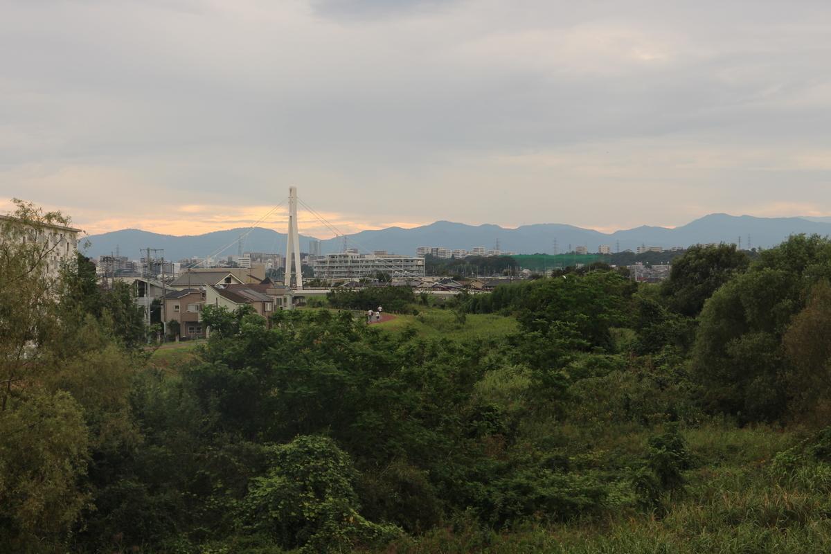f:id:tokotoko_yuuki:20191003212511j:plain
