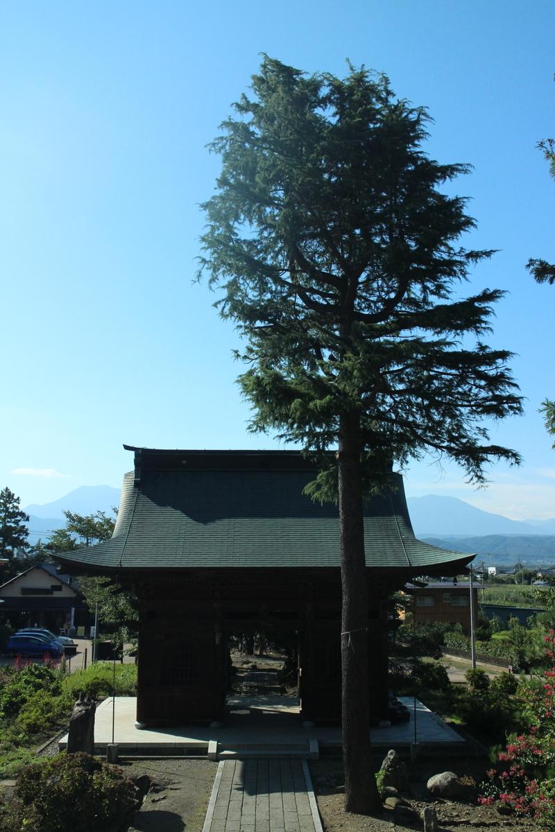f:id:tokotoko_yuuki:20191008224142j:plain