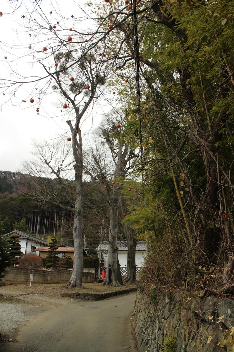 f:id:tokotoko_yuuki:20191215230342j:plain