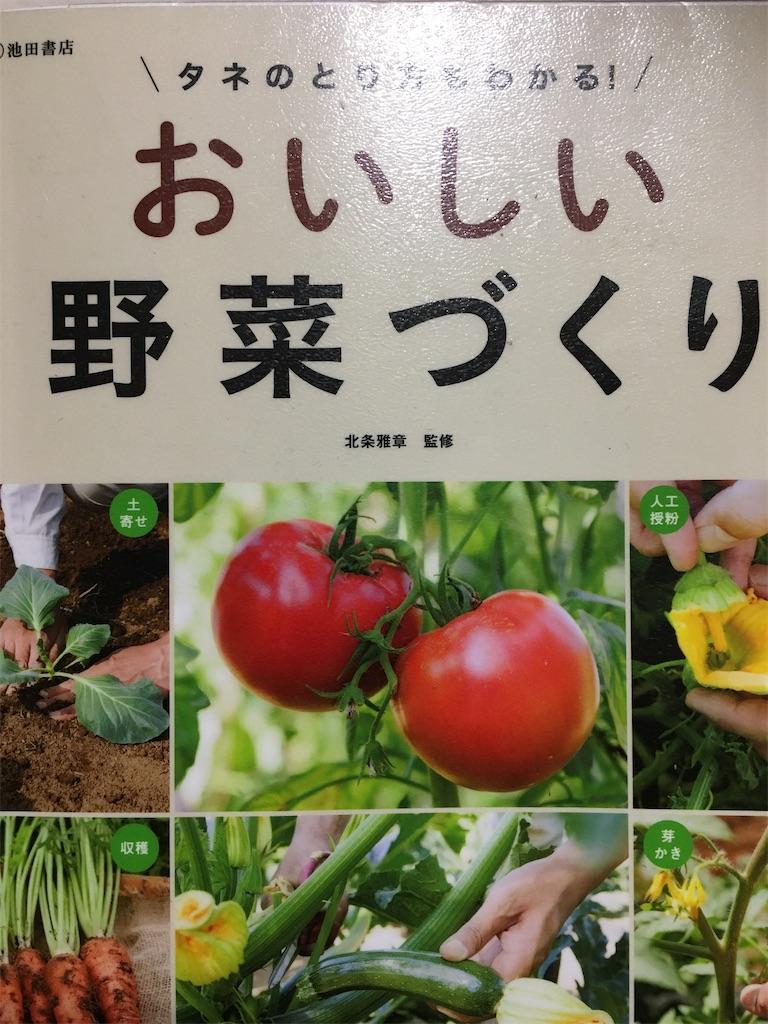 f:id:tokotoko_yuuki:20200205225303j:plain