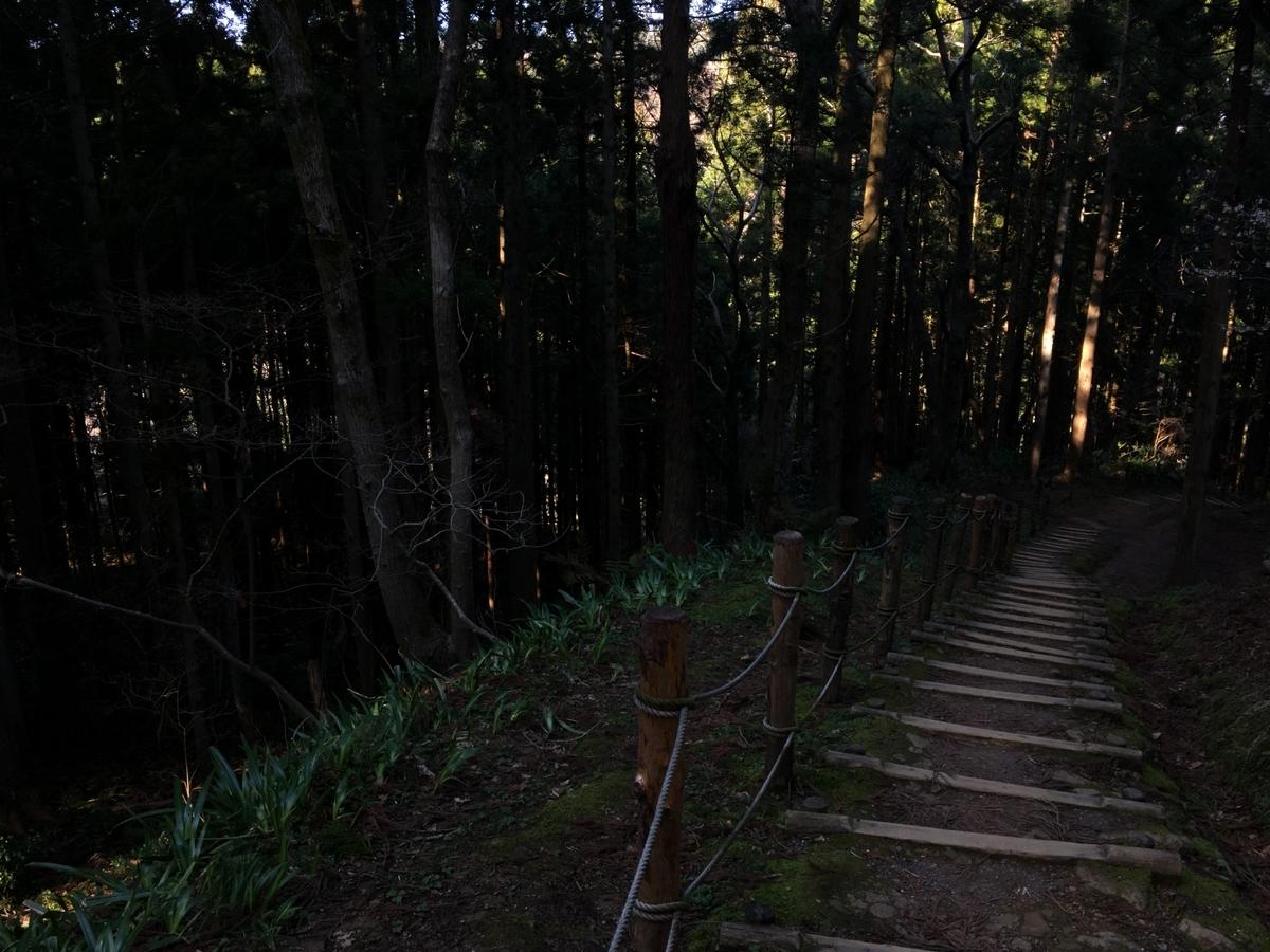 f:id:tokotoko_yuuki:20200328205637j:plain