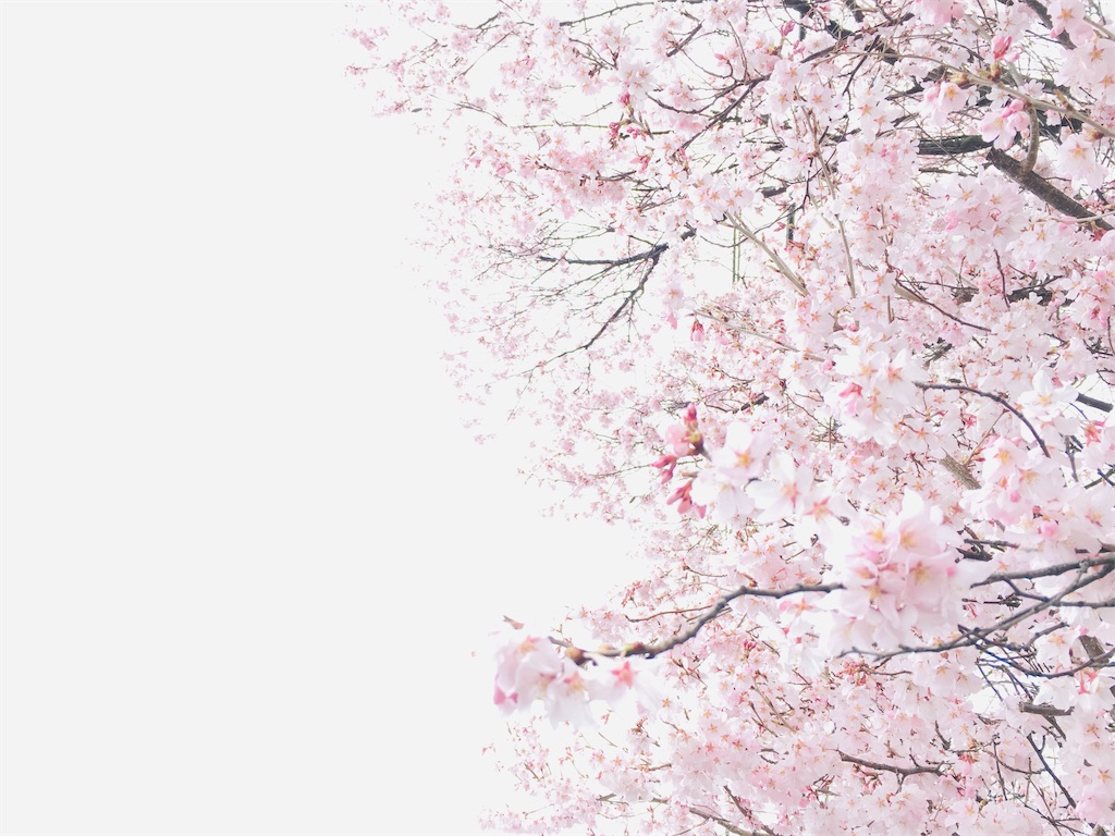 f:id:tokotoko_yuuki:20200401214204j:plain