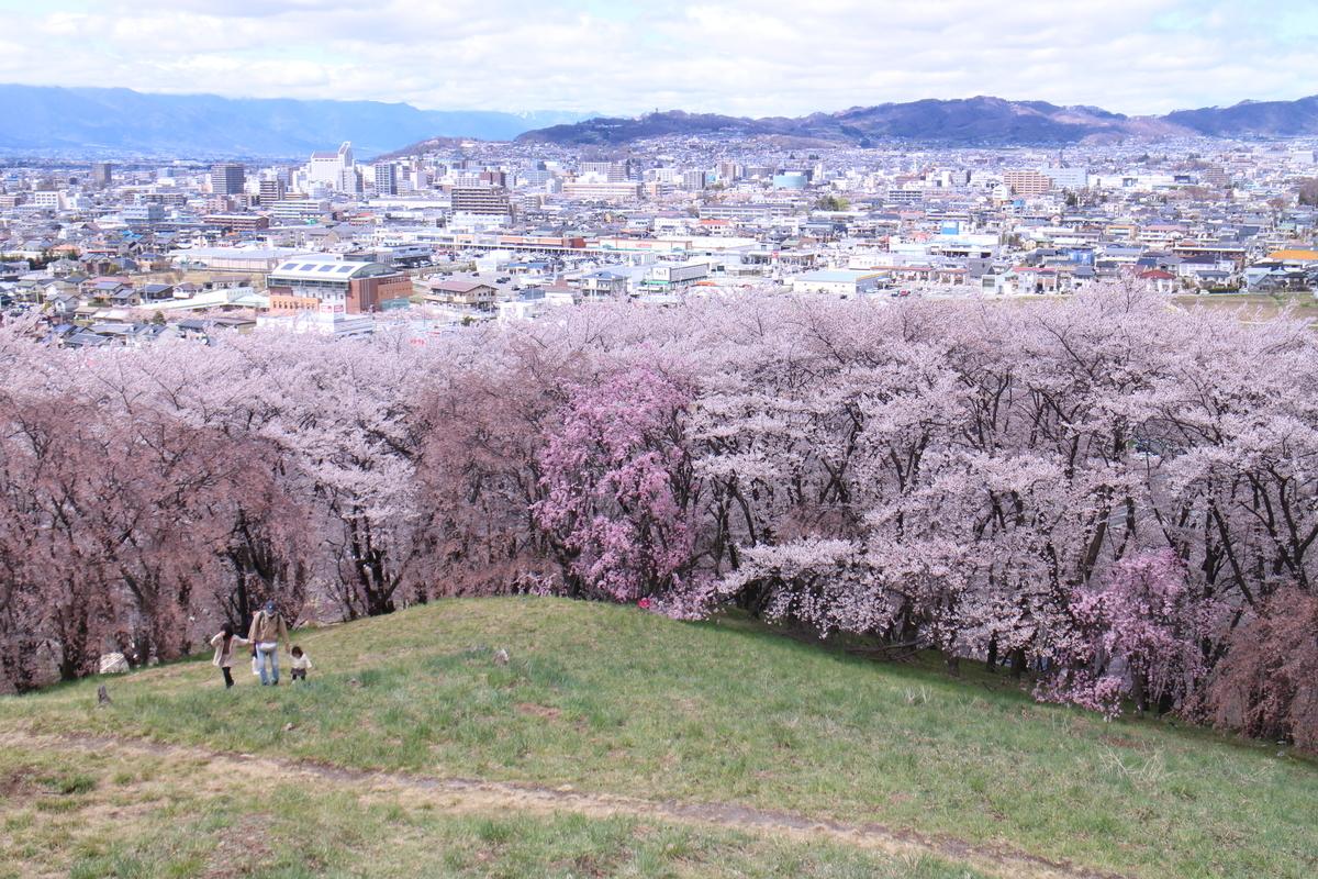 f:id:tokotoko_yuuki:20200419163549j:plain