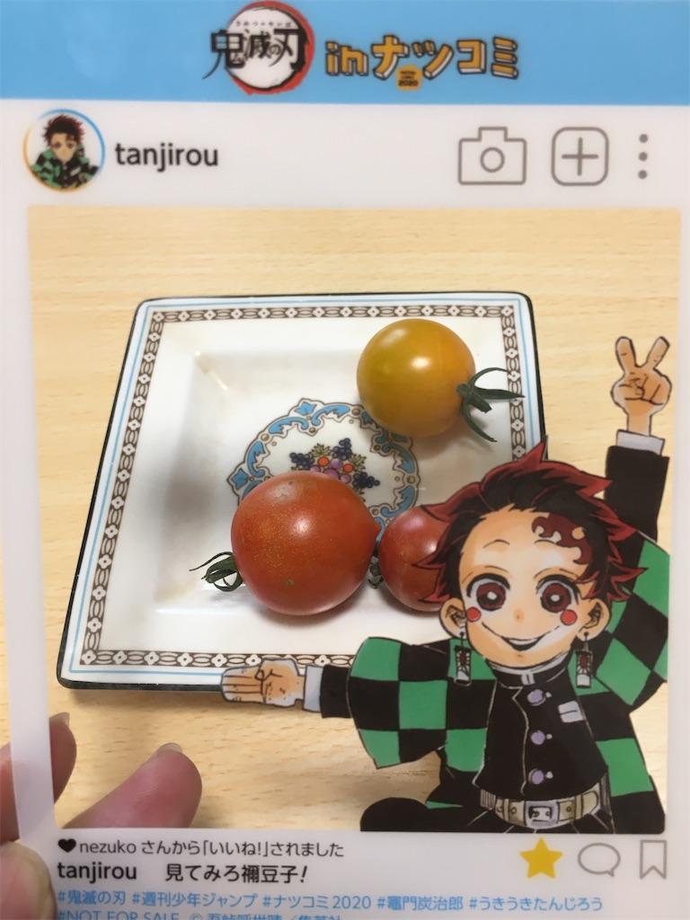 f:id:tokotoko_yuuki:20200820213308j:plain