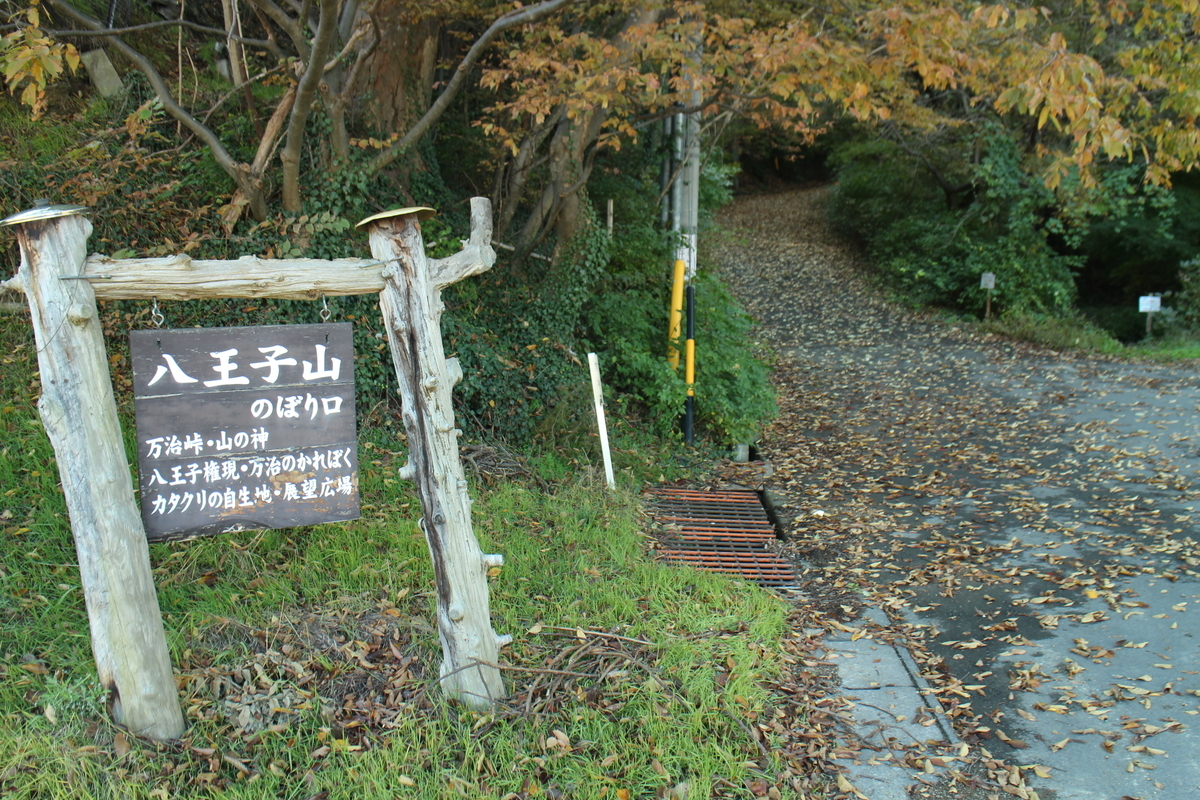 f:id:tokotoko_yuuki:20201104221512j:plain