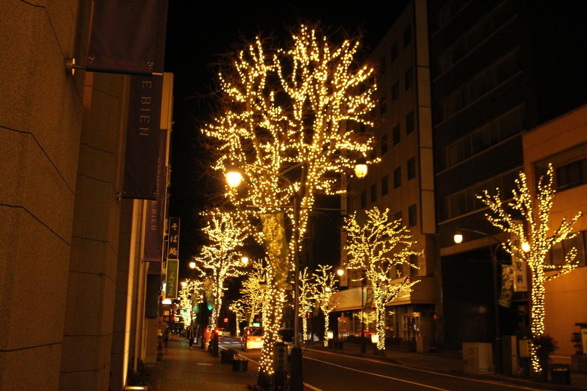f:id:tokotoko_yuuki:20201214210219j:plain