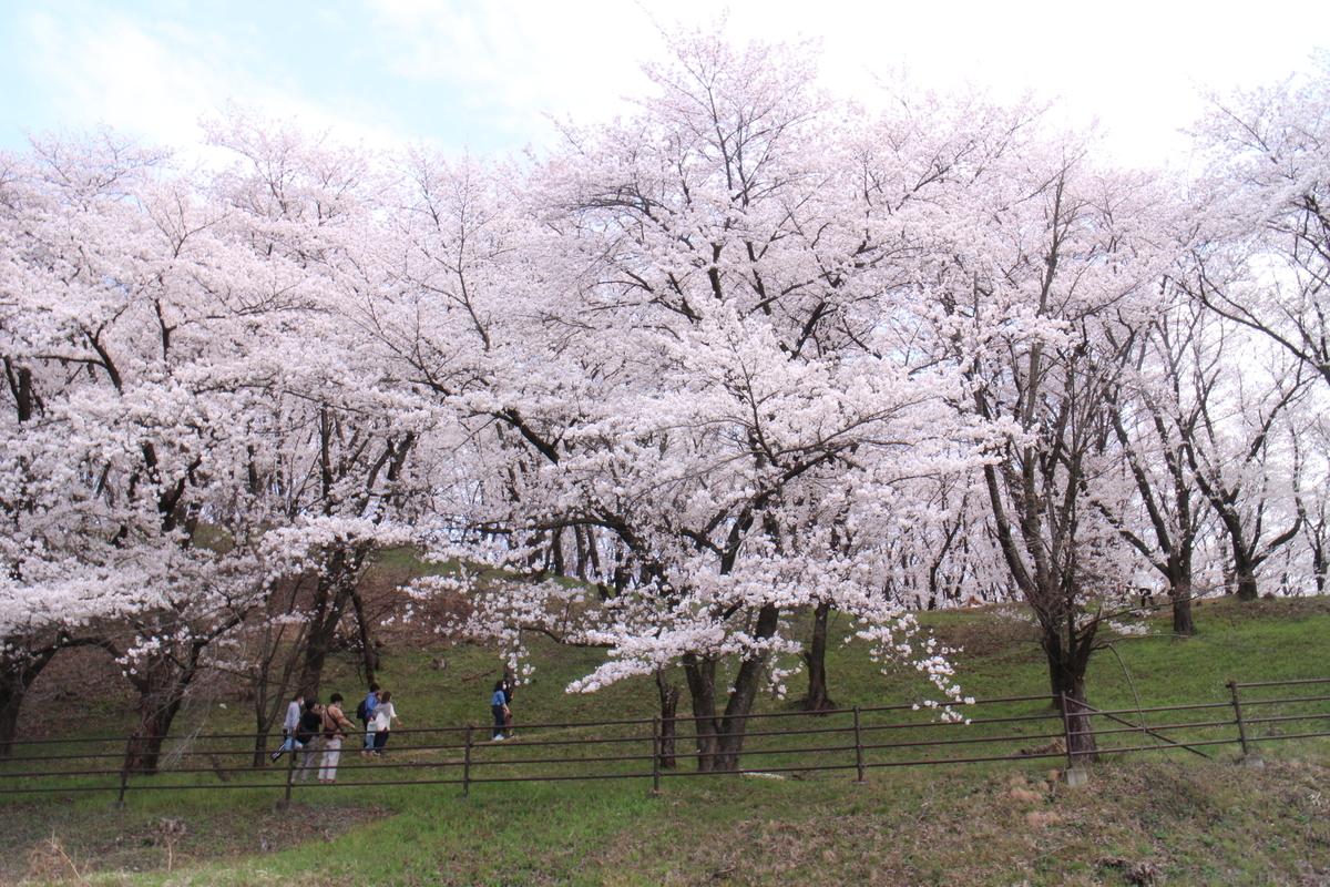 f:id:tokotoko_yuuki:20210404181238j:plain