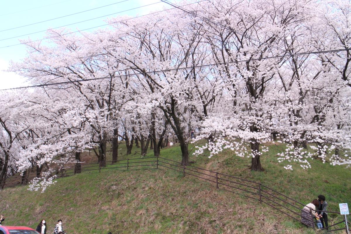 f:id:tokotoko_yuuki:20210404181618j:plain