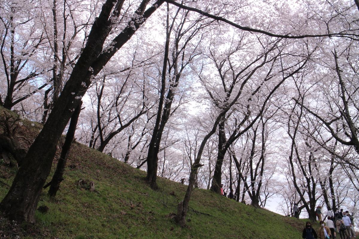f:id:tokotoko_yuuki:20210404182019j:plain