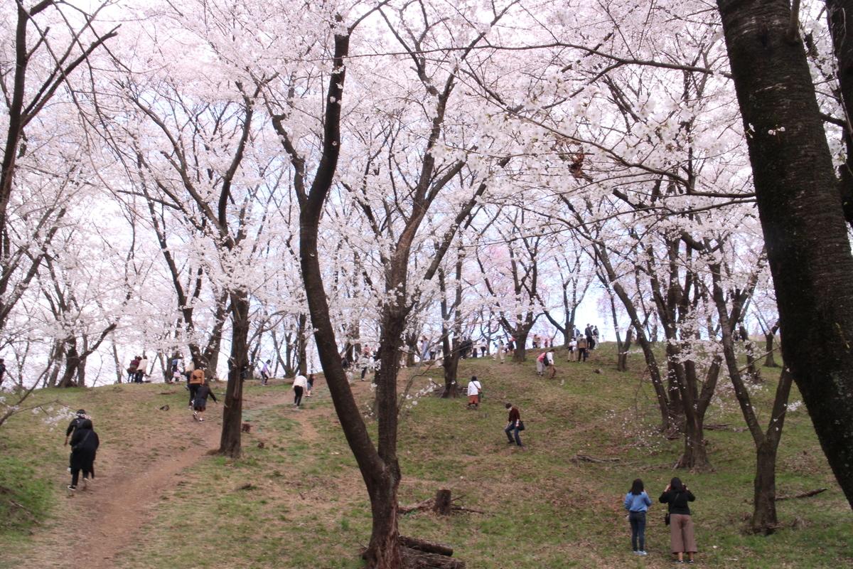 f:id:tokotoko_yuuki:20210404182500j:plain
