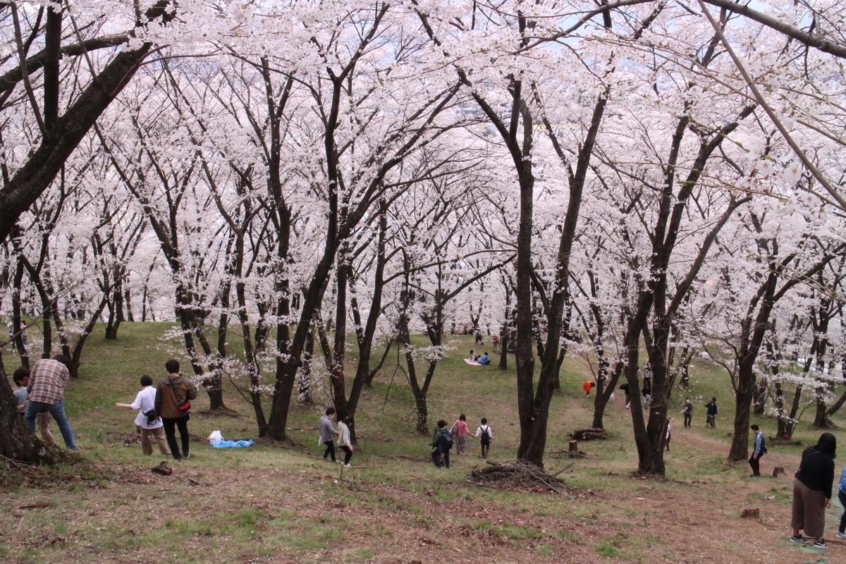 f:id:tokotoko_yuuki:20210404201028j:plain