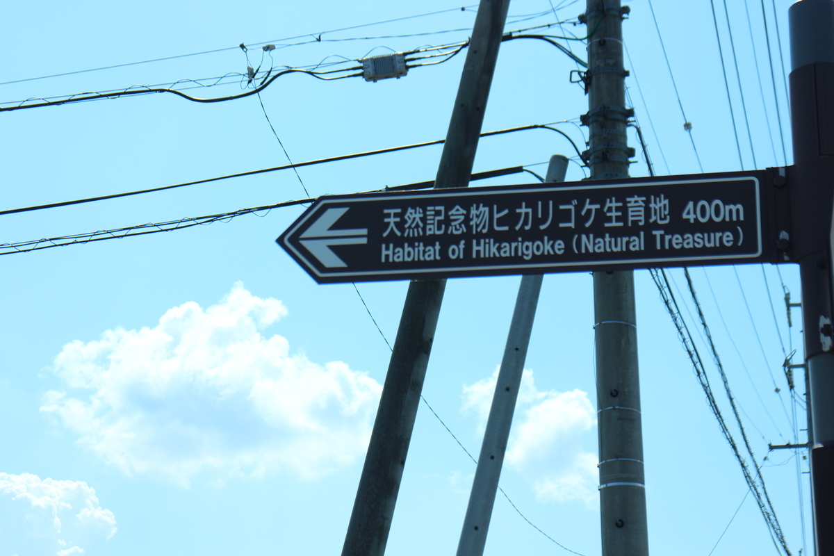 f:id:tokotoko_yuuki:20210827011809j:plain