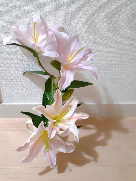 f:id:tokotokoarukuyo:20200623200118p:plain