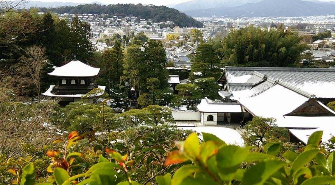 f:id:tokotokoarukuyo:20210118215625j:plain