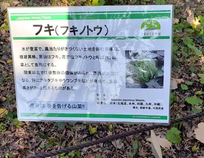 f:id:tokotokoarukuyo:20210201200432p:plain