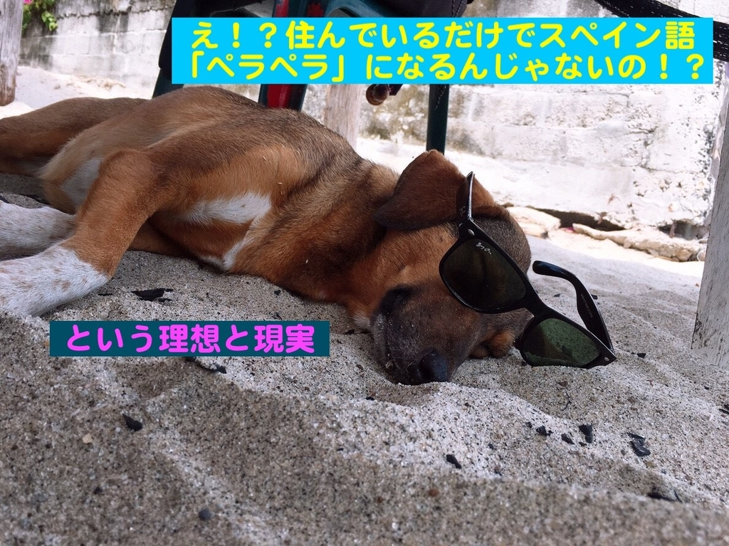f:id:tokotokok-k:20190130155537j:plain