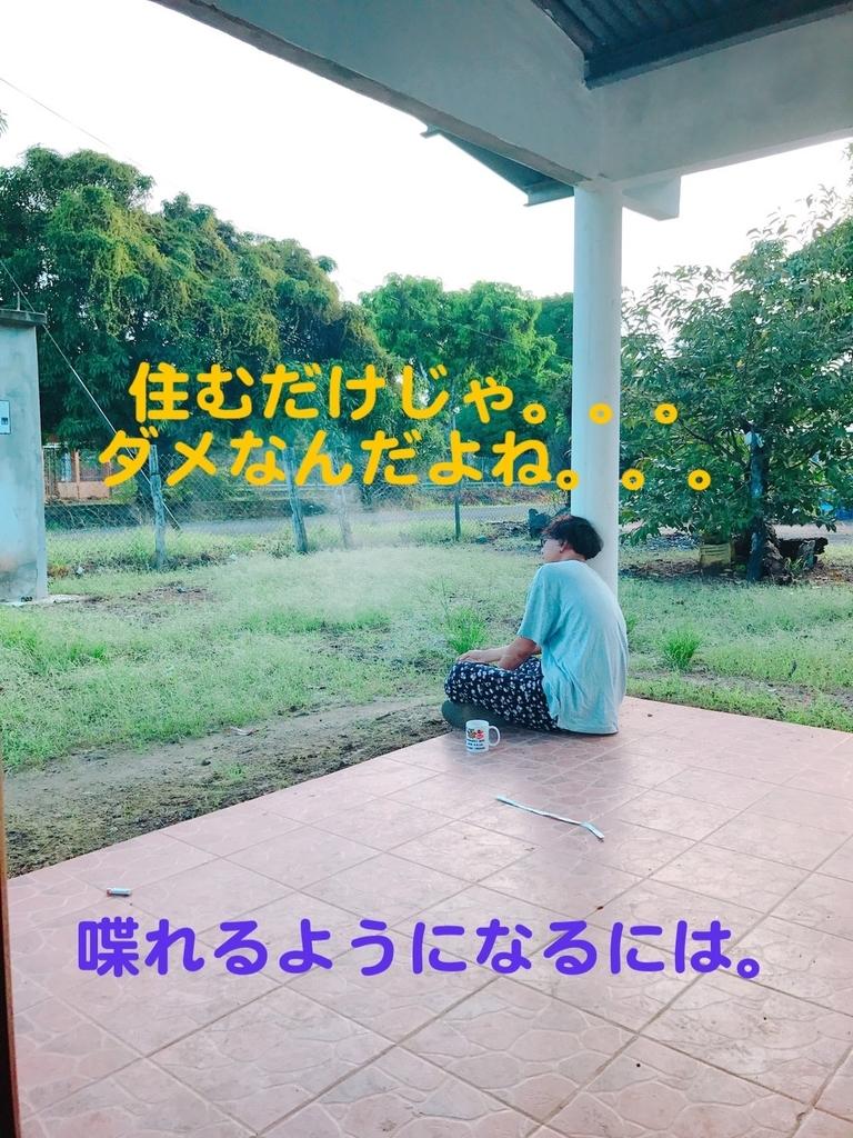 f:id:tokotokok-k:20190130160856j:plain