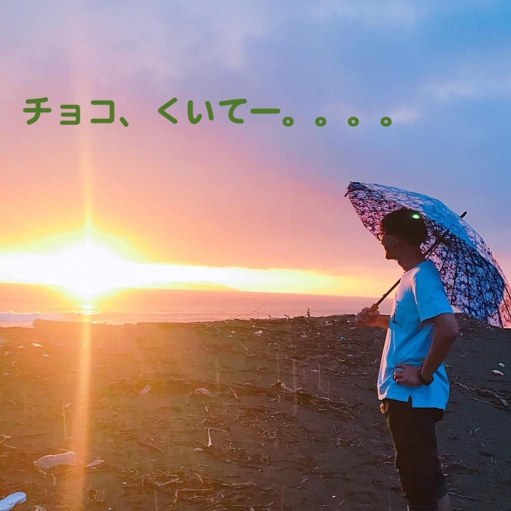 f:id:tokotokok-k:20190130162046j:plain