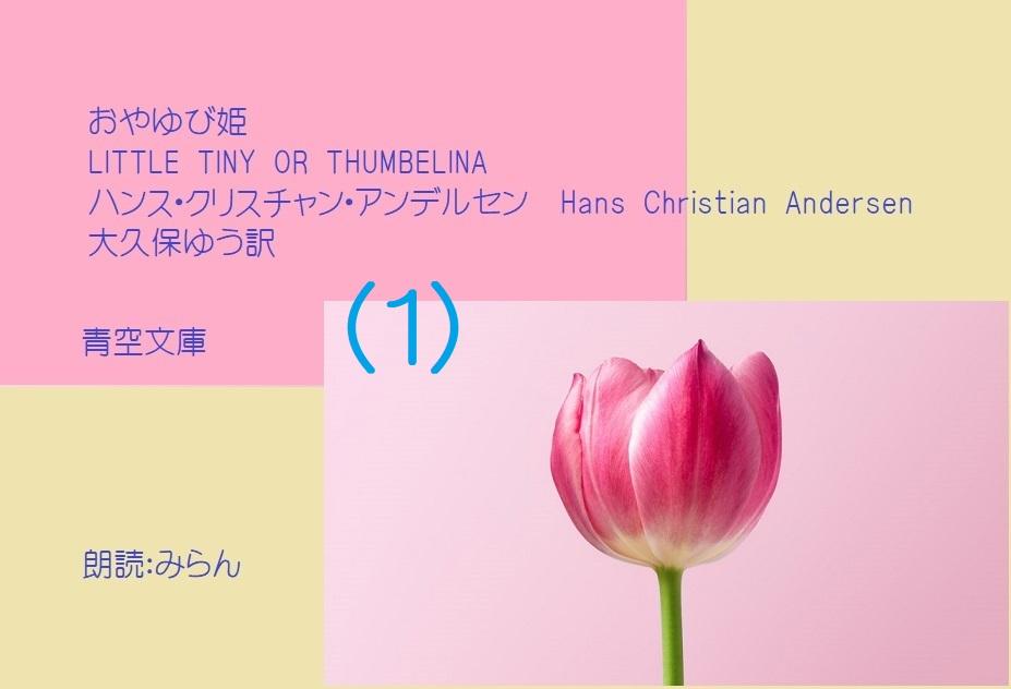f:id:tokotokoranran15:20210114195114j:plain