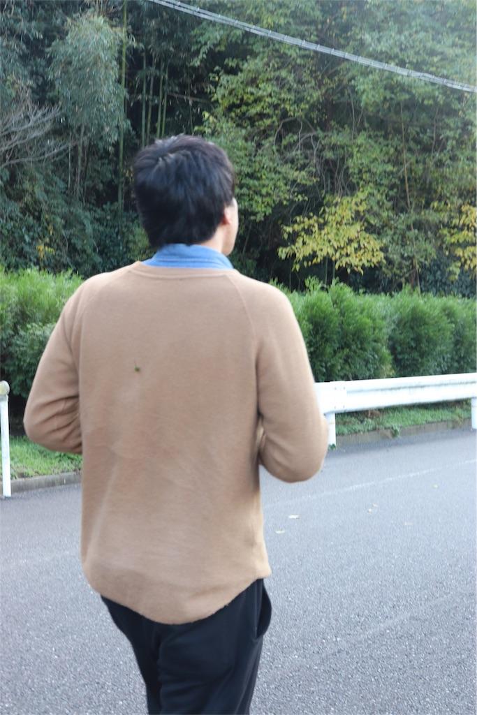 f:id:toku-chi323:20190117113032j:image
