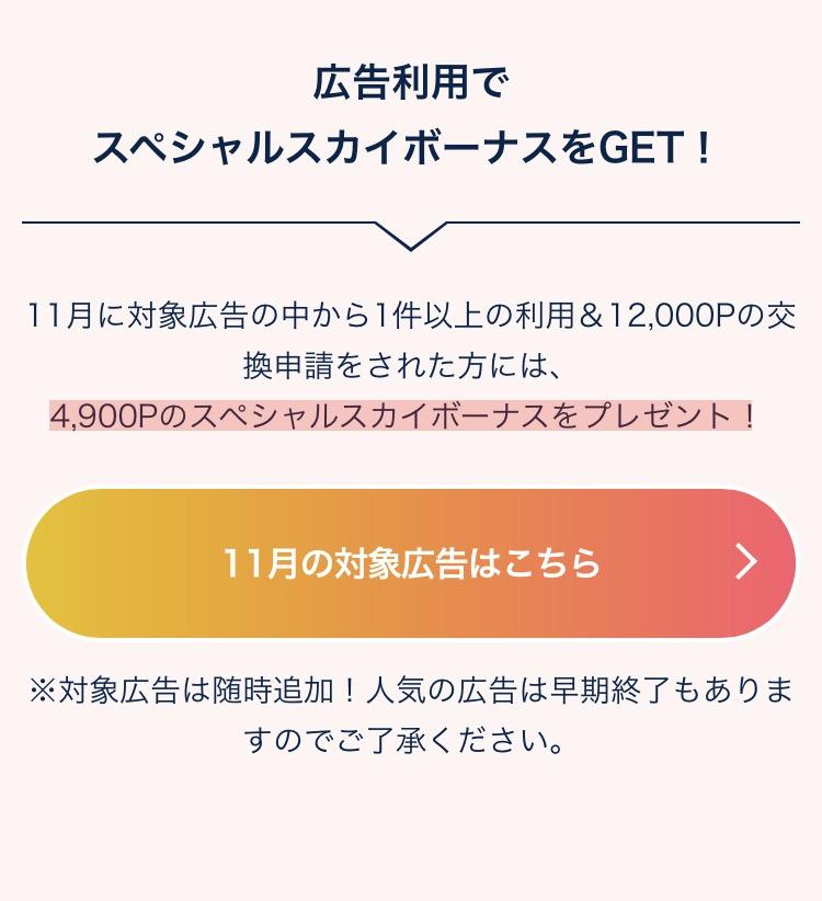f:id:toku_0511:20171115001027j:plain