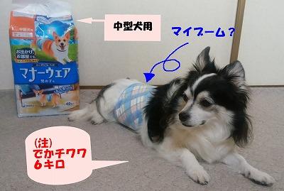 f:id:tokuichi:20170627161000j:plain