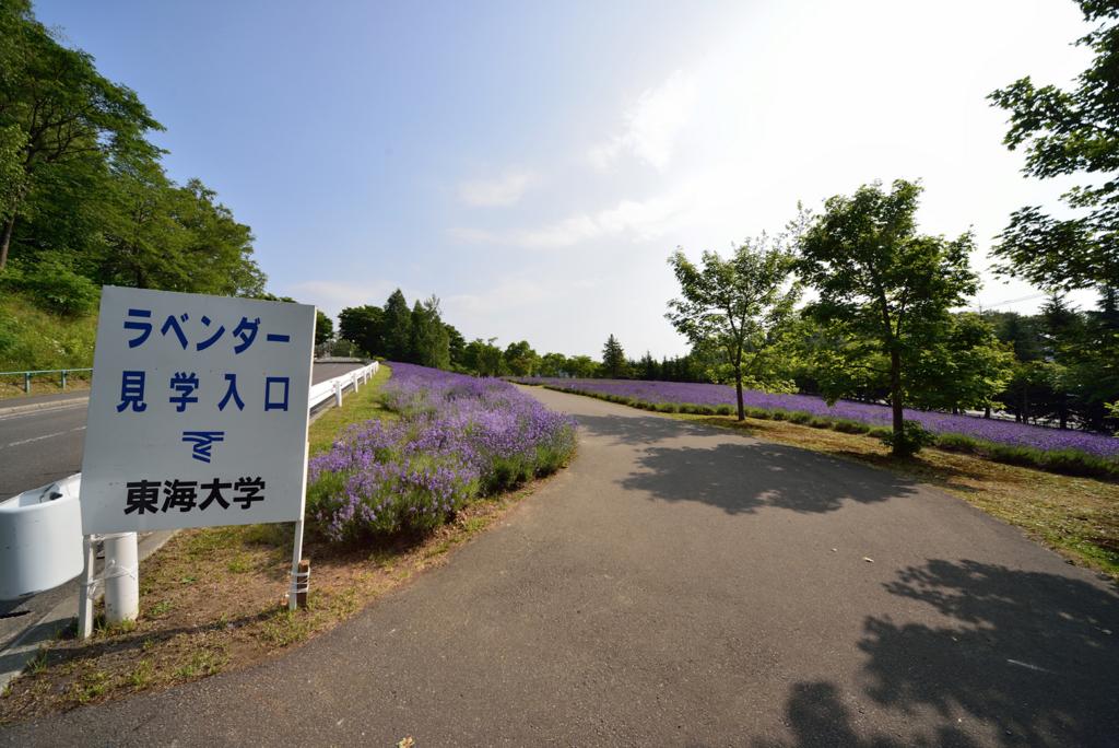 f:id:tokukita:20160511145017j:plain