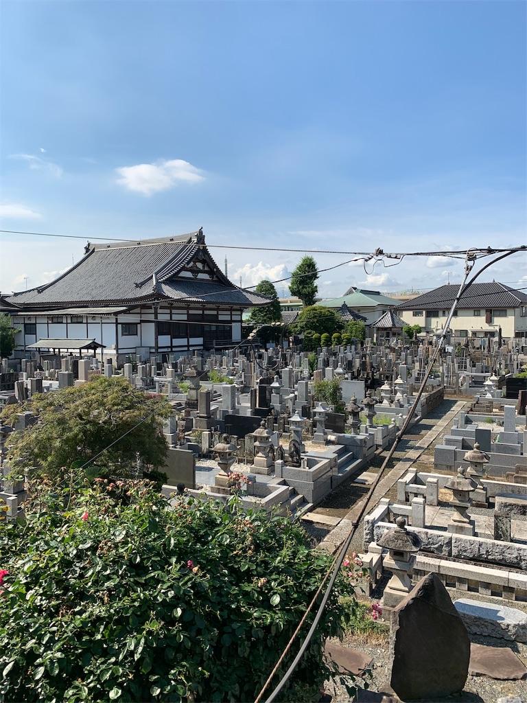 f:id:tokutokutokkunkun:20190618081557j:image