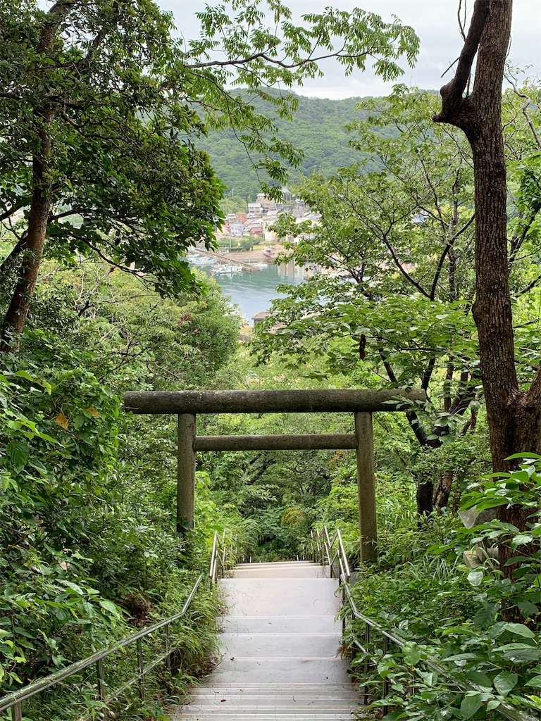 f:id:tokutokutokkunkun:20190711203138j:image