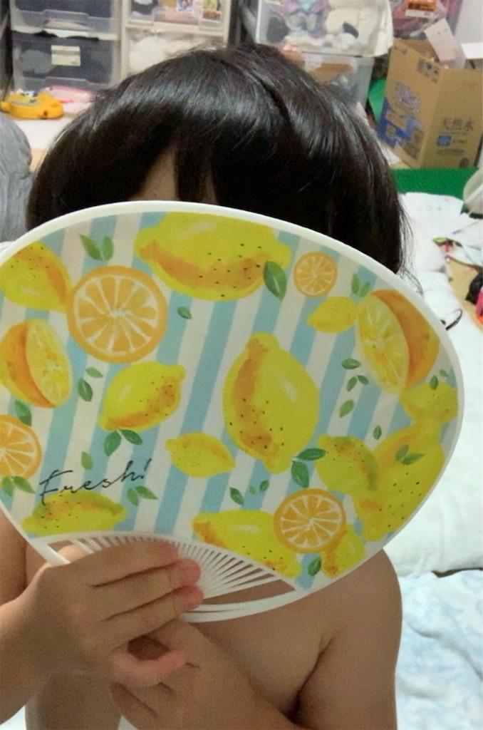 f:id:tokutokutokkunkun:20190725054210j:image
