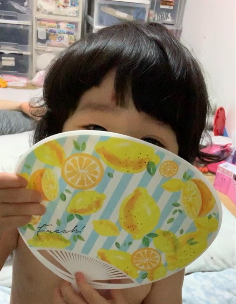 f:id:tokutokutokkunkun:20190725054216j:image