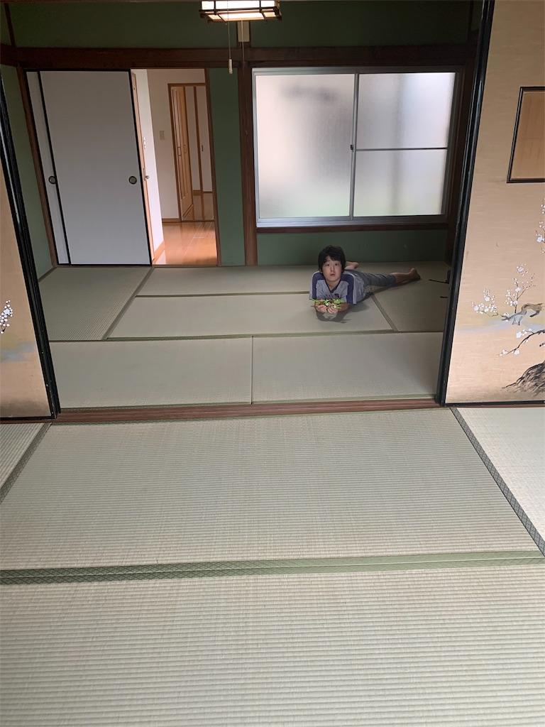 f:id:tokutokutokkunkun:20190902080525j:image