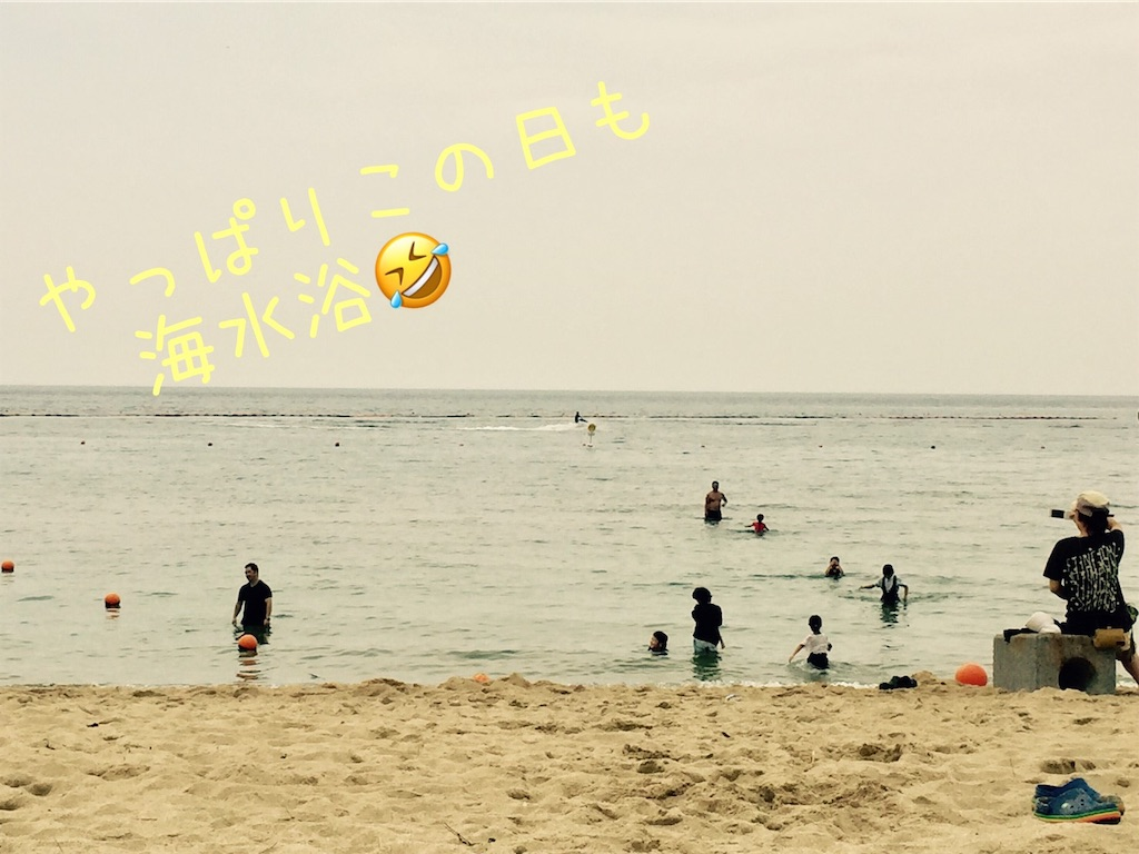 f:id:tokutokutokkunkun:20190902112951j:image