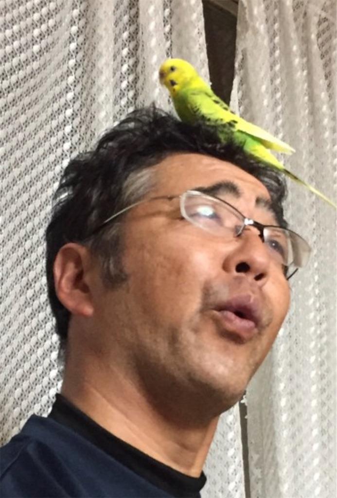 f:id:tokutokutokkunkun:20200104095705j:image