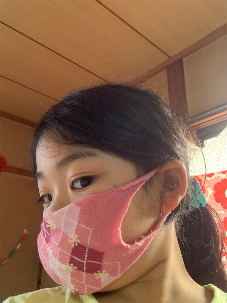 f:id:tokutokutokkunkun:20200418175212j:image