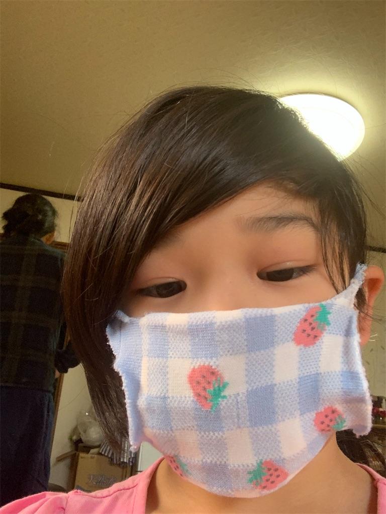f:id:tokutokutokkunkun:20200418175220j:image