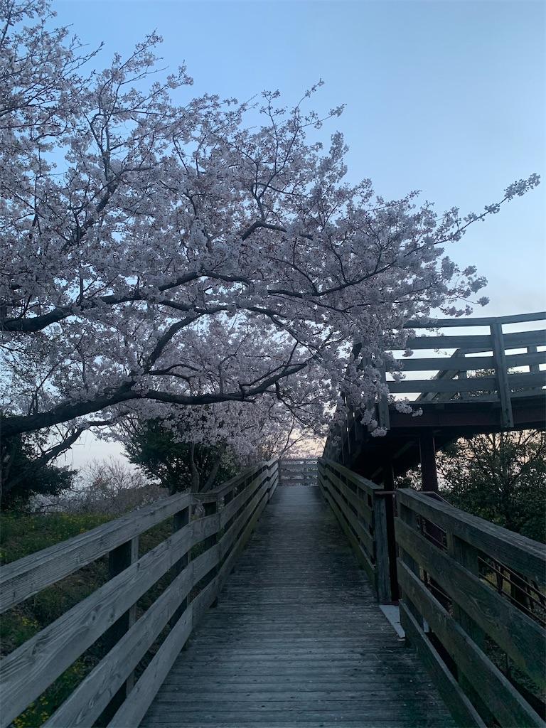 f:id:tokutokutokkunkun:20210411151825j:image