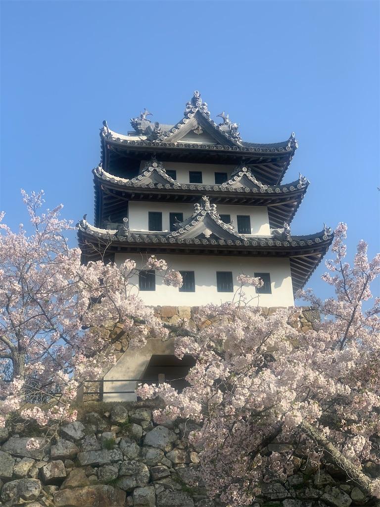 f:id:tokutokutokkunkun:20210411151832j:image